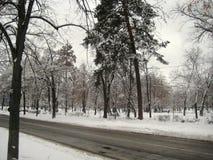 De gang van de de wintermiddag langs de mening van de stadsstraat van de snow-covered bomen royalty-vrije stock afbeeldingen