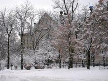 De gang van de de wintermiddag langs de mening van de stadsstraat van de snow-covered bomen royalty-vrije stock foto's
