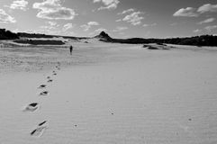 De gangen van de mens alleen in woestijn stock afbeeldingen