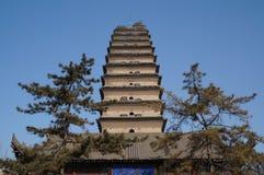 De ganspagode van China van Xian kleine wilde stock afbeeldingen