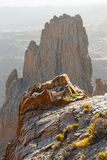de Garcia park narodowy roques teide Tenerife Zdjęcia Royalty Free