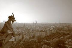 De gargouilles van Notre Dame Stock Foto's