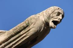 De gargouilles van Notre Dame royalty-vrije stock foto's