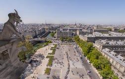 de gargoyle贵妇人notre巴黎 免版税库存图片