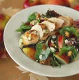 De gastronomische Salade van de Kip Royalty-vrije Stock Foto's