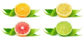 De geïsoleerde citrusvruchtenhelften royalty-vrije stock afbeeldingen