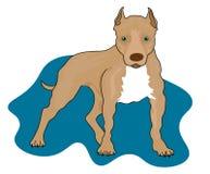 De geïsoleerde hond van de Webbokser - geschetst vector illustratie