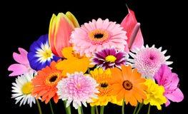 De Geïsoleerde Inzameling van het bloemboeket van Diverse Kleurrijke Bloemen Stock Afbeeldingen