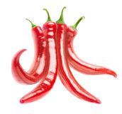 De geïsoleerdeg Peper van de Spaanse peper royalty-vrije stock afbeelding