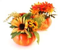 De geïsoleerdep Bloemen van Halloween Stock Afbeeldingen