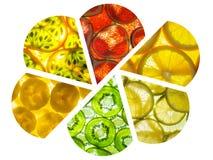 De geassorteerde collage van terug aangestoken fruit snijdt bloemblaadjesvorm Stock Afbeelding