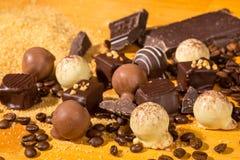 De geassorteerde pralines van de Chocoladetruffel Royalty-vrije Stock Fotografie
