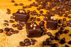 De geassorteerde pralines van de Chocoladetruffel Stock Afbeeldingen