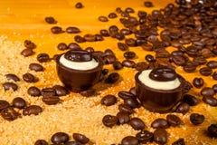De geassorteerde pralines van de Chocoladetruffel Stock Afbeelding