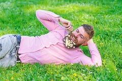 De gebaarde mens met madeliefjebloemen in baard legt op weide, helling op hand, grasachtergrond Kerel met binnen boeket van madel royalty-vrije stock fotografie