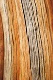 De gebarsten Achtergrond van het Pijnboomhout Royalty-vrije Stock Afbeelding