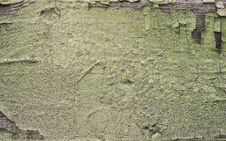 De gebarsten oppervlakte schilderde houten textuur geelgroene achtergrond Stock Fotografie