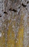 De gebarsten Witte Achtergrond van de Muurtextuur, zeer oude muur met een barst op het stock foto's