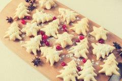 De gebeëindigde koekjes met Amerikaanse veenbessen, kruiden Royalty-vrije Stock Foto
