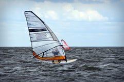 De gebeurtenis van Windsurfing in Oostzee Royalty-vrije Stock Foto