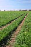De gebieden van de landbouwgrond Stock Afbeeldingen