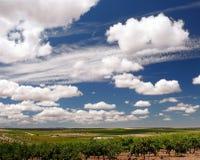 Gewassen en wolken Stock Afbeeldingen