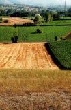 De gebieden van het hooi en van het graan Stock Afbeelding