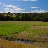 De gebieden van het landbouwbedrijf Stock Foto