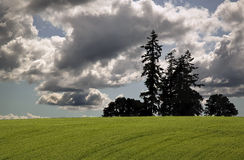 De Gebieden van Oregon stock afbeelding