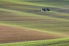 De gebieden van zuidenmoravian, de gebieden van de Tsjechische Republiek, moravian heuvels Stock Afbeelding