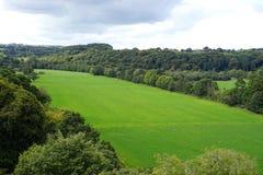 De gebieden voorbij Blarney kasteel royalty-vrije stock fotografie