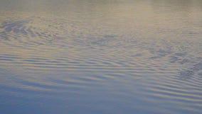 De gebiedsrimpelingen van de rivier hoogste mening en de golf, Breking van van het de textuurmeer van de zonlicht het hoogste men stock footage