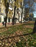 De gebouwen die van de stadsstraat het gras van mensenbladeren lopen stock afbeelding