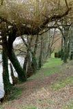 De Gebouwen en de rivieren van Frankrijk van de reizenstad royalty-vrije stock foto