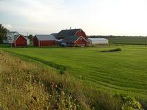 De gebouwen van het landbouwbedrijf Stock Foto