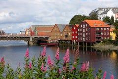 De gebouwen van Trondheim Royalty-vrije Stock Foto's