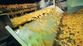 De gebraden chips vallen op de vervoerder Chipsproductielijn stock videobeelden