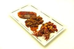De gebraden de tijgergarnalen en octopus in een Chinese stijl roosterden barbecue in een kruidige olie Stock Fotografie