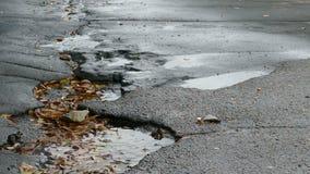 De gebroken het tarmackuilen van de asfaltregen in pool drijvende bladeren zijn dalende het bespatten dalingen stock videobeelden