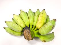 De gecultiveerde groene Mobiele Fotografie van de banaan echte aard Royalty-vrije Stock Foto