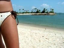 De gedeeltelijke Dame van de Bikini bij kust Stock Fotografie