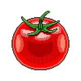 De gedetailleerde illustratie geïsoleerde vector van de pixeltomaat fruit stock illustratie