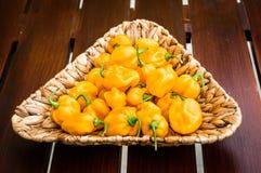 De geeloranje rijpe peper van de habanero hete Spaanse peper op een houten plaat Royalty-vrije Stock Afbeelding