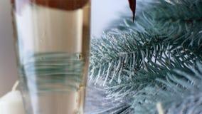 De geest van Kerstmis? met Kerstman en Noel Een glas champagne in het Nieuwjaar` s decor van het huis stock video