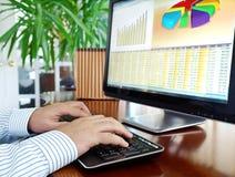 De gegevens van Analizing over computer. Stock Afbeeldingen