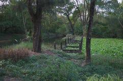 De geheime hoek in de tuin royalty-vrije stock foto's