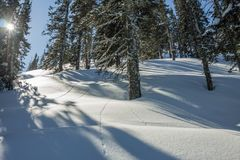 De geheimzinnige bergen van het de winterlandschap in de winterbomen behandelde sneeuw Royalty-vrije Stock Fotografie