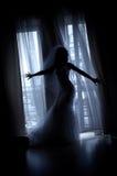 De geheimzinnige bruid Stock Foto's