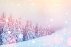 De geheimzinnige majestueuze bergen van het de winterlandschap Royalty-vrije Stock Afbeeldingen