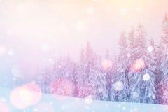 De geheimzinnige majestueuze bergen van het de winterlandschap Stock Fotografie